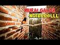 Pancingan Murai Gacor Roll Rapat Cocok Buat Murai Yang Males Bunyi Djamin Langsung Nyaut Respon  Mp3 - Mp4 Download