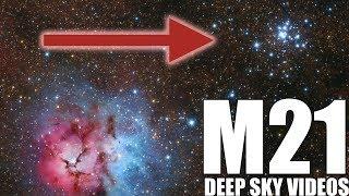 8-million-year-old stars (M21) - Deep Sky Videos