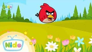 Món ăn ngọt ngào: Red Nóng Tính ( Angry Bird ) - Bé vào bếp cùng mẹ | Nido Channel
