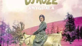 DJ Koze feat. Caribou - Track ID Anyone? thumbnail