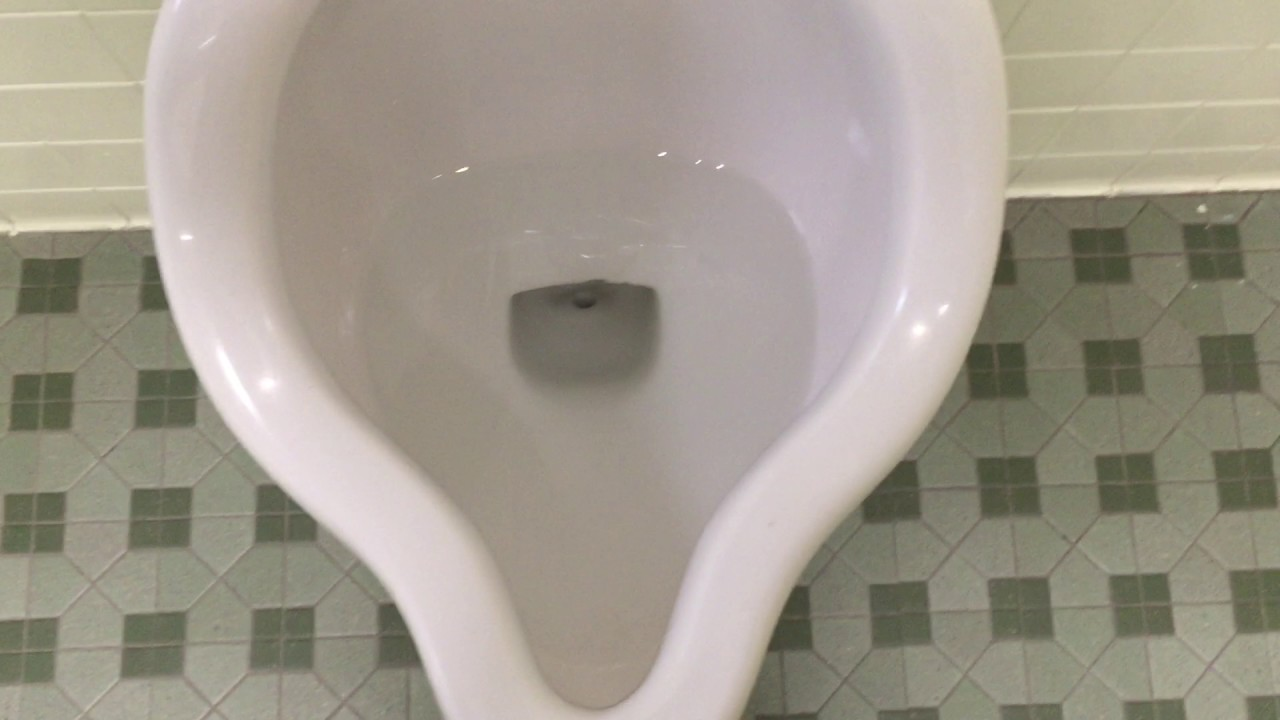 848 A Crane Santon Toilet and Two Crane Expedio Urinals