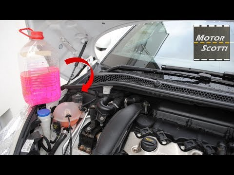 Changing The Coolant / Antifreeze In Your Car