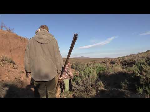 LJ Hunting Safaris -  July Hunt 2019
