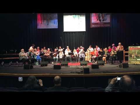 """Alaska Jumpin Flea's at Anchorage Folk Festival """"Raining In Ireland"""""""