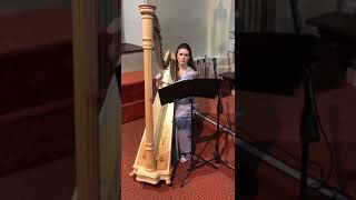All my life- The Beatles, harp instrumental YouTube Thumbnail