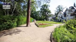 видео музей заповедник в д поленова