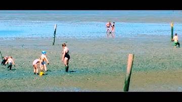 Der Strand von Norddeich