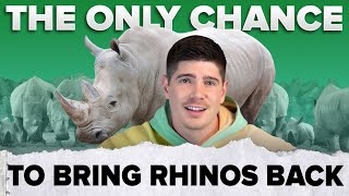How We Wiped Out The Rhinos 🦏   #shorts