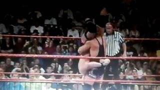 stone cold breaks his neck!!!!