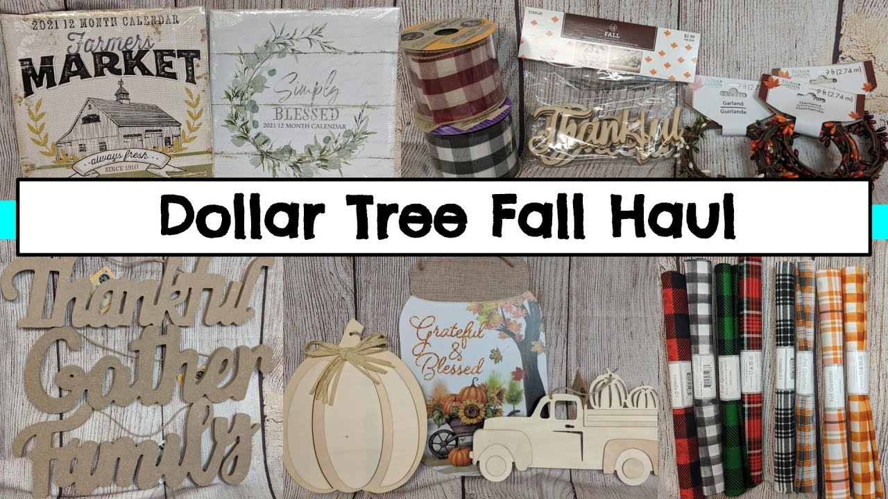 NEW DOLLAR TREE HAUL  July 15  New and Fall Items for Upcoming DIYs  #dollartree
