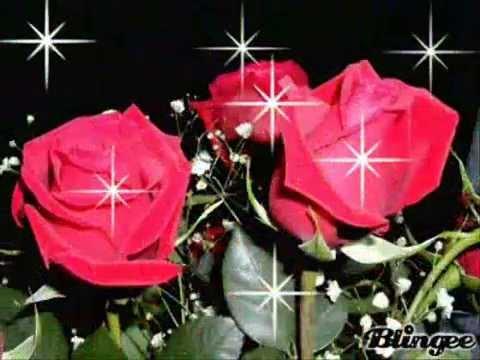 3d Rose Wallpaper Apps El Jazmin Y La Rosa Vicente Fernandez Youtube