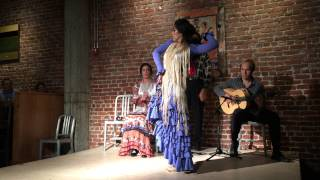 Melissa Cruz at The Flamenco Room at Thirsty Bear San Francisco November 2014