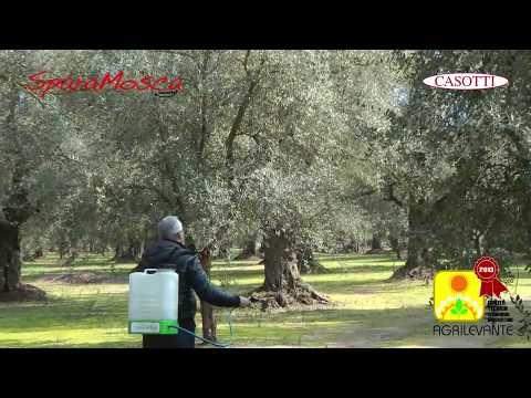 Casotti - Lotta Biologica Alla Mosca Dell'olivo E Della Frutta