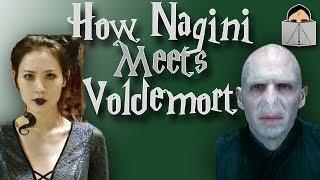 How Nagini Meets Voldemort | FANTASTIC BEASTS THEORY