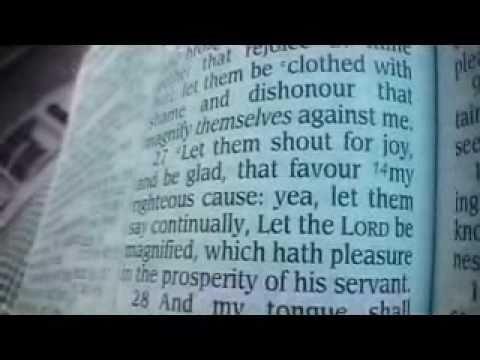 psalm 35 king james version