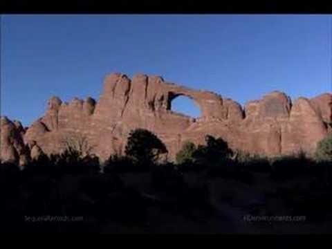 Earth Drum - Power Animals - David and Steve Gordon