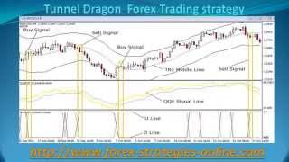 Tunnel Dragon Forex Trading strategy