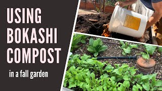 Using Bokashi Compost in a Fall Garden