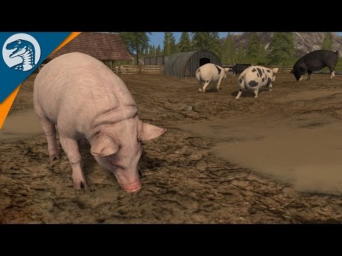NEW PIGS ON THE FARM | Farming Simulator 2017 Gameplay