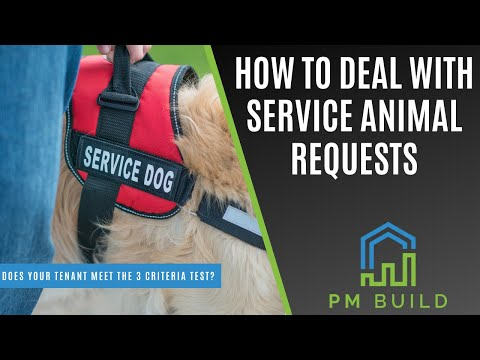 How Property Manager Should Handle Tenant Requests For Service Animals