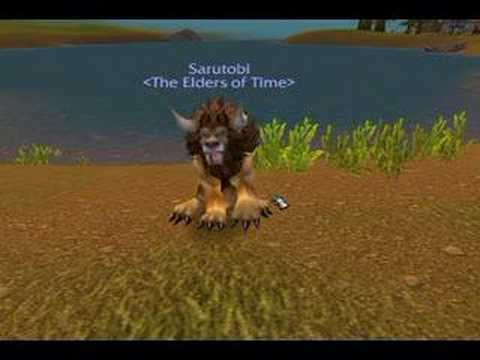 WoW Druid forms