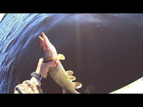 Рыбалка на Вуоксе 2019