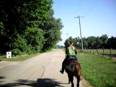 Avon Ladies On Horseback delivering books