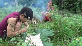 Survival skills: Primitive life finding food meet mushroom - Cooking mushroom for Eating delicious