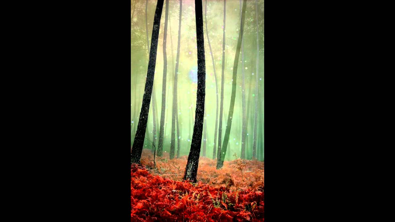 Enchanted Forest Android Live Wallpaper - YouTube