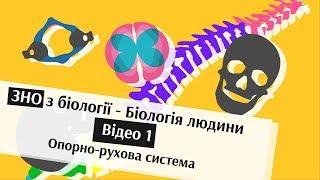 ЗНО з Біології - Відео 1. Кістки черепа та хребта - Біологія людини  | brames
