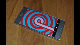 Sony XPERIA XZ with Android 9.0 Pie works perfect