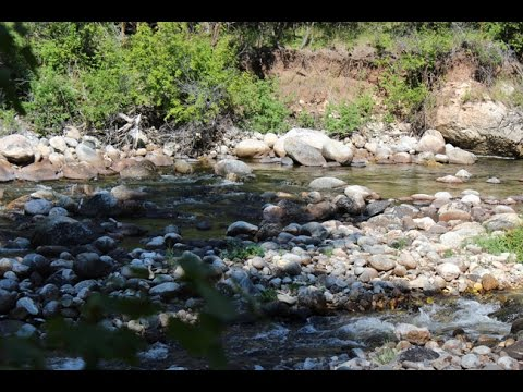 Centennial Gold 20 acre placer mining claim on proven Tensleep Creek in Wyoming