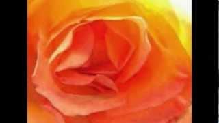 Чувственный (эротический) массаж(«Чувственный массаж» — это масляный массаж всего тела. Специально подобранные приемы массажа и чувственны..., 2013-10-31T08:54:08.000Z)