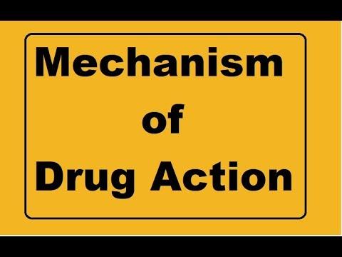 Mechanism of drug action !!! Basic pharmacology