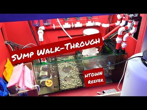 Sump Walkthrough - 230g Reef Tank Aquarium - Trigger Systems Sump
