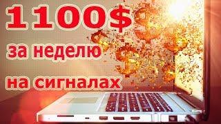 BitOK! Сколько можно заработать на криптовалюте bitokБитОК