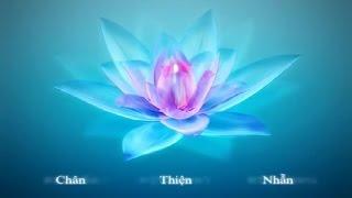Chân Thiện Nhẫn - 3 nguyên lý của Falun Dafa theo các ngôn ngữ