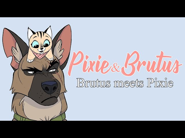 Brutus New Home & Family   Pixie and Brutus Comic Dub