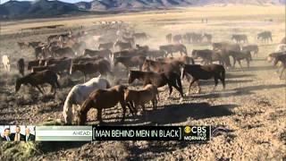 Horse meat: Honest business or inhumane?