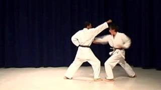 Shotokan Karate Syllabus First Belt Requirements