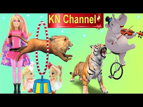 KN Channel ĐI XEM XIẾC THÚ SƯ TỬ NHẢY QUA VÒNG LỬA - HÀ MÃ KÉO ĐÀN VUI NHỘN TẬP 1