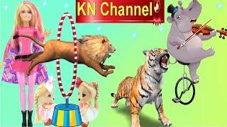 KN Channel ĐI XEM XIẾC THÚ VUI NHỘN TẬP 1 SƯ TỬ NHẢY QUA VÒNG LỬA - HÀ MÃ KÉO ĐÀN