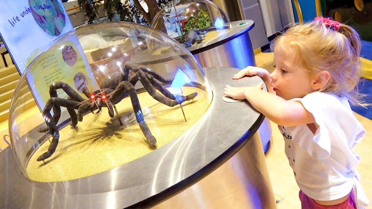 Детский музей науки - Развлечения для детей  Childrens Museum Kids Pretend Play