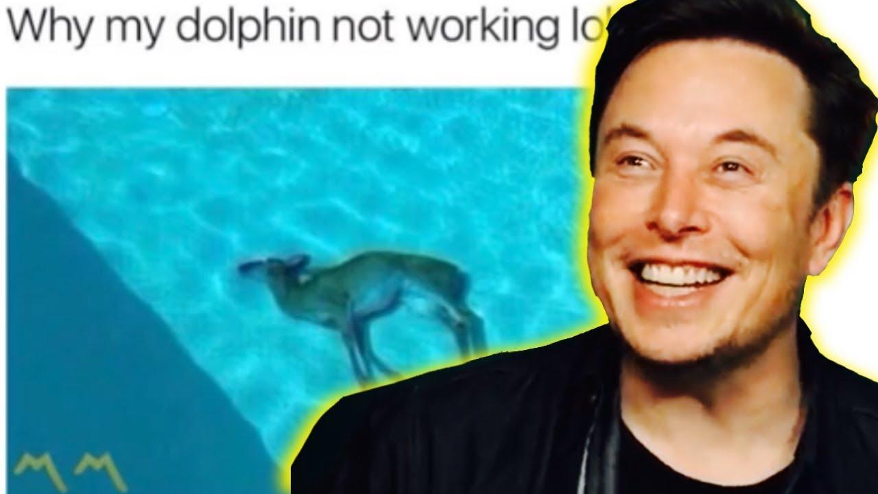 Elon Musk Hosts Meme Review (Full Clip) - YouTube