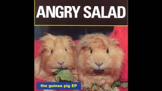 Watch Angry Salad Did I Hurt You video