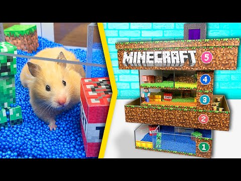 Hamsters in 5 - Level Minecraft Maze | Pool maze for hamsters