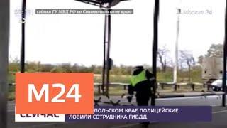 Смотреть видео Сотрудник ГИБДД на Ставрополье сбил человека и скрылся с места ДТП - Москва 24 онлайн