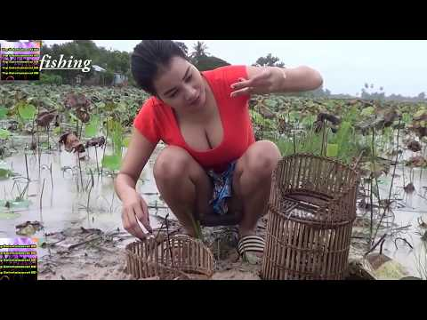 Amazing Cute Girl Catches Frogs By Using Khmer Tranditional Trap - Cambodia Fishing Girl