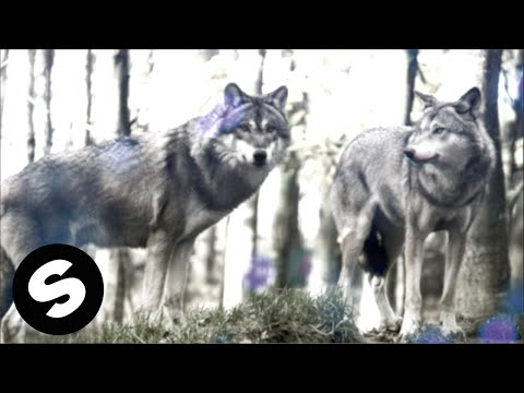 Danimal – Wolves