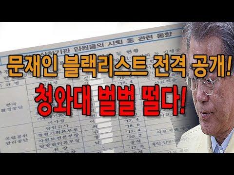 문재인 블랙리스트 전격 공개! 청와대 벌벌 떨다! (진성호의 돌저격) / 신의한수